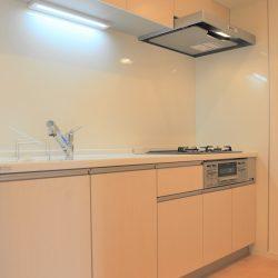 ライオンズマンション青葉台第3(新規フルリフォーム済物件・すぐにご見学が可能です・212号室)
